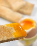 rostad yolk för bröd ägg royaltyfria bilder