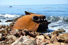 Rostade Marine Monster Arkivfoto