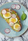 Rostat bröd med avokadot, ägget och rädisan Royaltyfri Fotografi