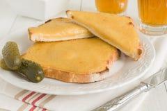 Rostat bröd med smält ost royaltyfri fotografi