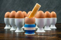 Rostat brödsoldat Dipped i kokt ägg i äggkopp på en tabell fotografering för bildbyråer