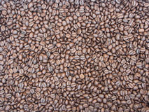 Rosted Coffee Beans Royalty Free Stock Photography