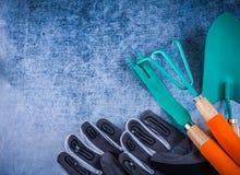Rostfritt kratta mursleven rotar skyddande arbeta i trädgården handskar ag för weederen Arkivbilder