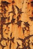 Rosthintergrund Stockbilder