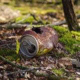 Rostig can i skogen Arkivfoton