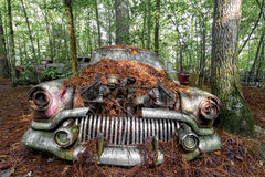 Rostig gammal bil i skog Royaltyfri Bild