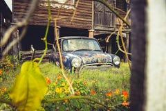 Rostig gammal bil i trädgård fotografering för bildbyråer