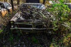 Rostig, gammal kastad bil i träna Arkivfoto