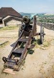 Rostig historisk kanon, Trencin, Slovakien, vapentema Arkivfoton