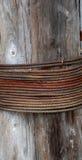 rostig kabel Arkivfoto