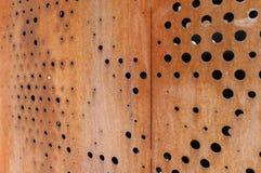 Rostig metallisk bakgrund med hål Fotografering för Bildbyråer