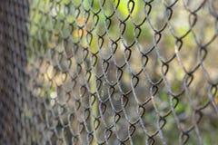 Rostig metallrasterbakgrund eller textur royaltyfri foto