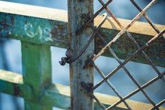 Rostig metallskyddsgaller med målarfärgrest Arkivfoton
