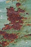 Rostig metallyttersida med sprucken grön målarfärg, abstrakt mött rostigt Royaltyfri Bild