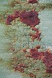 Rostig metallyttersida med sprucken grön målarfärg, abstrakt mött rostigt Royaltyfri Foto