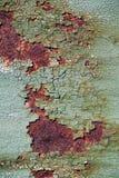 Rostig metallyttersida med sprucken grön målarfärg, abstrakt rostig metalltextur, rostig metallbakgrund för design med kopierings Arkivfoton