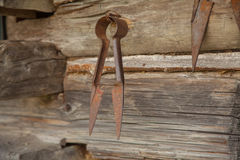 Rostig sax för tappning för klippande får Arkivfoton