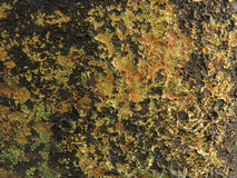 rostig surface textur för detaljerad fragmentmetallrost Arkivfoto