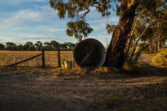 Rostig tunna längs ett staket med dörren på ett lantbrukarhem i vildmark i de Grampian bergen, Victoria, Australien arkivfoton