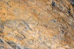 Rostiga, bruna, gråa skrapade naturliga asfulla texturerade bakgrunder Arkivfoto