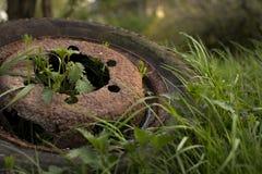 Rostiga gummihjul Royaltyfri Fotografi