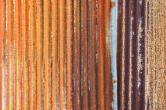 Rostiga korrugerade stryker belägger med metall staketZincväggen texturerar bakgrund Royaltyfri Fotografi