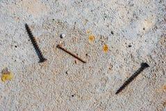 Rostiga skruvar och en spika ligger på betong Royaltyfri Foto