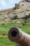 Rostige alte Kanone, zum von Kernen abzufeuern Stockfotos