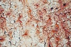Rostige gemalte Metalloberfläche Lizenzfreies Stockbild