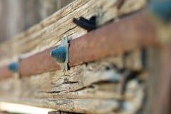 Rostige Metallverzierungen auf einer alten Holztür Stockbilder