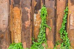 Rostige Metallwand Stockfoto