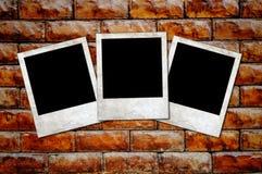 Rostige unbelegte Fotofelder auf einem konkreten Hintergrund Stockfotografie