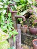 Rostiger alter Eisenwasserhahn im Garten Lizenzfreies Stockfoto