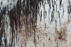 Rostiger Metallhintergrund mit Streifen des Rosts Lizenzfreies Stockbild