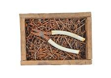 Rostiger Nagel und Drahtschneider in der Holzkiste Lizenzfreies Stockfoto