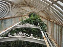Rostiges altes Gewächshaus mit tropischen Anlagen stockbild