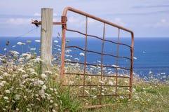 Rostiges offenes Tor mit Blumen stockbilder