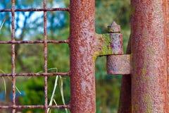 Rostigt gångjärn på en port Fotografering för Bildbyråer