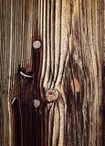 Rostigt spika i gammalt träbräde Royaltyfri Foto
