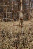 Rostigt staket c Royaltyfri Foto