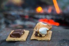 Rosting蛋白软糖和smores在营火 库存照片