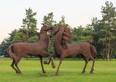 ROSTOV-ON-DON RYSSLAND - JUNI 18, 2016: Skulptur av järnhästarna i parkera av staden Rostov nära flygplats Arkivfoto