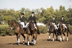 Rostov-op-TREK aan, 22 Rusland-SEPTEMBER - Mooie ruiter op een paard Royalty-vrije Stock Fotografie