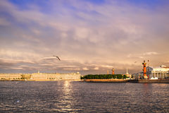 Rostral columns lit by illumination of the white nights at dawn. St. Petersburg, Russia Stock Photography
