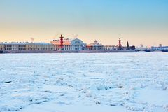 Rostral Columns and Spit of Vasilyevsky Island Stock Photos
