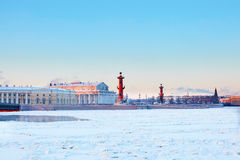 Rostral Columns and Spit of Vasilyevsky Island Stock Image