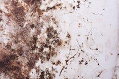 Rosttextur för bakgrund Royaltyfria Foton