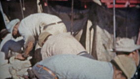 ROSWELL, ΝΈΟ ΜΕΞΙΚΌ 1953: Πρόβατα που σέρνονται από κουρευμένο το πόδια μαλλί από τους εργαζομένους απόθεμα βίντεο