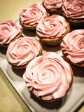Rosy Cup Cakes. Baked cup cakes with Stock Images