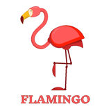 Rosy Flamingo Linear Icon Photo libre de droits